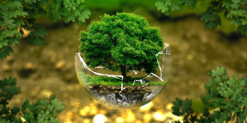 environmental protection 326923 1920